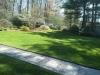 Yard and Walkway.jpg