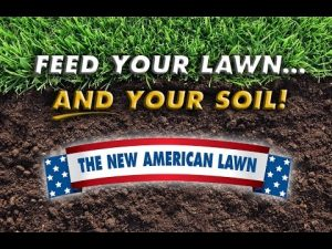 american lawn